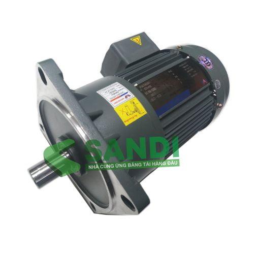 Động cơ Wanshsin 200W 3 Pha 220V Mặt bích