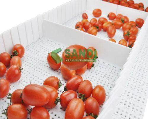 Hệ thống băng tải chế biến rau củ quả