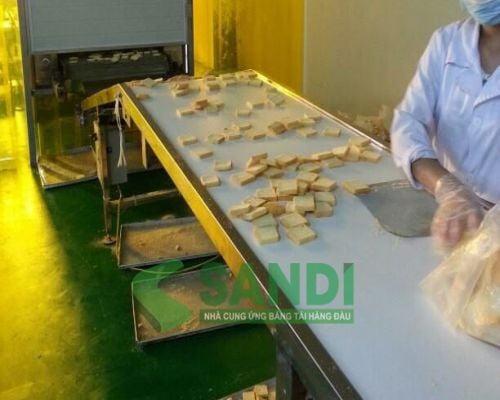 Giới thiệu băng tải dùng trong công nghiệp thực phẩm